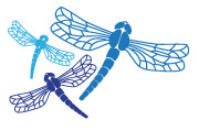 dragon-fly-logos